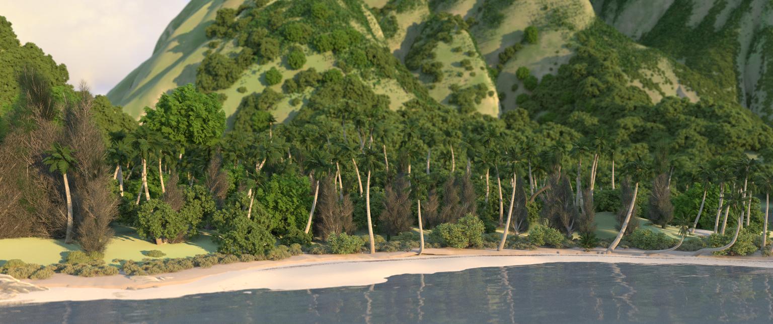 moana-extra-beauty-beach-dof